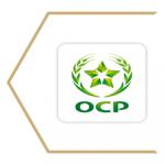 Modern-style-OCP